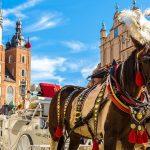Transport van en naar Polen - Van Duuren